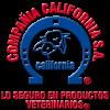 california 100x100 - AVITRON BLISTER X 10 TABLETAS (AVES)