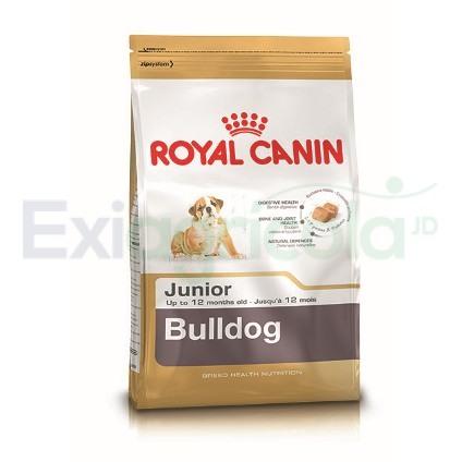 bulldogjun - ROYAL CANIN BULLDOG JUNIOR (CACHORRO)