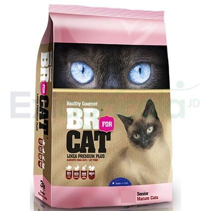 BR FOR CAT SENIOR - BR FOR CAT SENIOR 7+