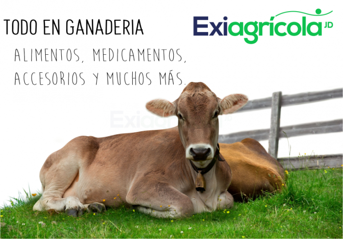 BANNER AGRICOLA EXIAGRICOLA movil
