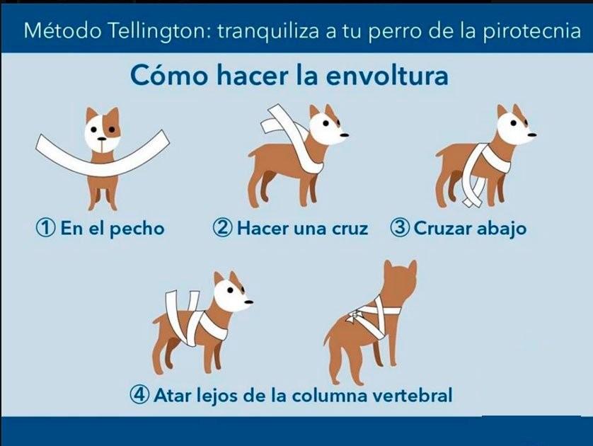 Metodo Tellington