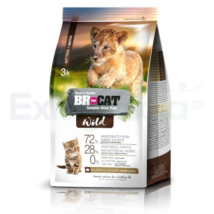 BR FOR CAT WILD GATITOS